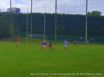 Rebel Og U13 Hurling Aug 10th 2016 (49)
