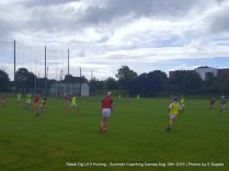Rebel Og U13 Hurling Aug 10th 2016 (5)