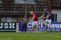 Cork V Tipp 2017 Photos Denis Flynn (3)