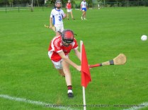 Og Iomaint CIT 2017 Cork V Waterford (22)