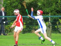 Og Iomaint CIT 2017 Cork V Waterford (29)