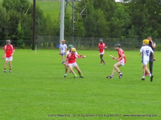 Og Iomaint CIT 2017 Cork V Waterford (8)