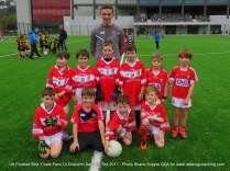Teams U8 Football Blitz Pairc Ui Chaoimh Oct 14th 2017 (118)