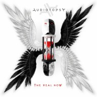 """Audiotopsy album - """"The Real Now"""""""