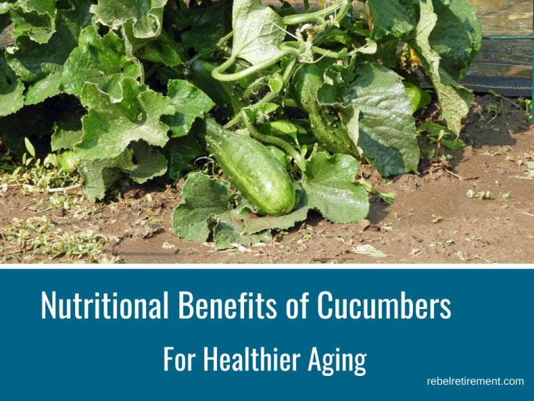 Nutritional Benefits of Cucumbers for Healthier Aging