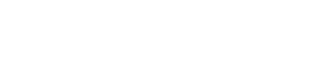 Rebel Store logo