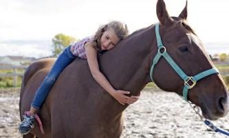 Девочки и конный спорт