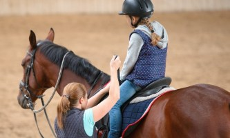 Конный спорт. Тренировка