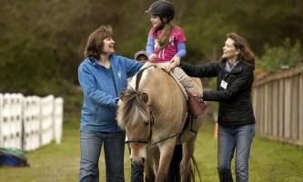 Чем полезны занятия с лошадьми?