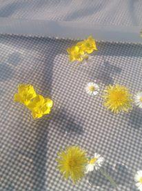 soupe de fleurs spring activities/ toddlers
