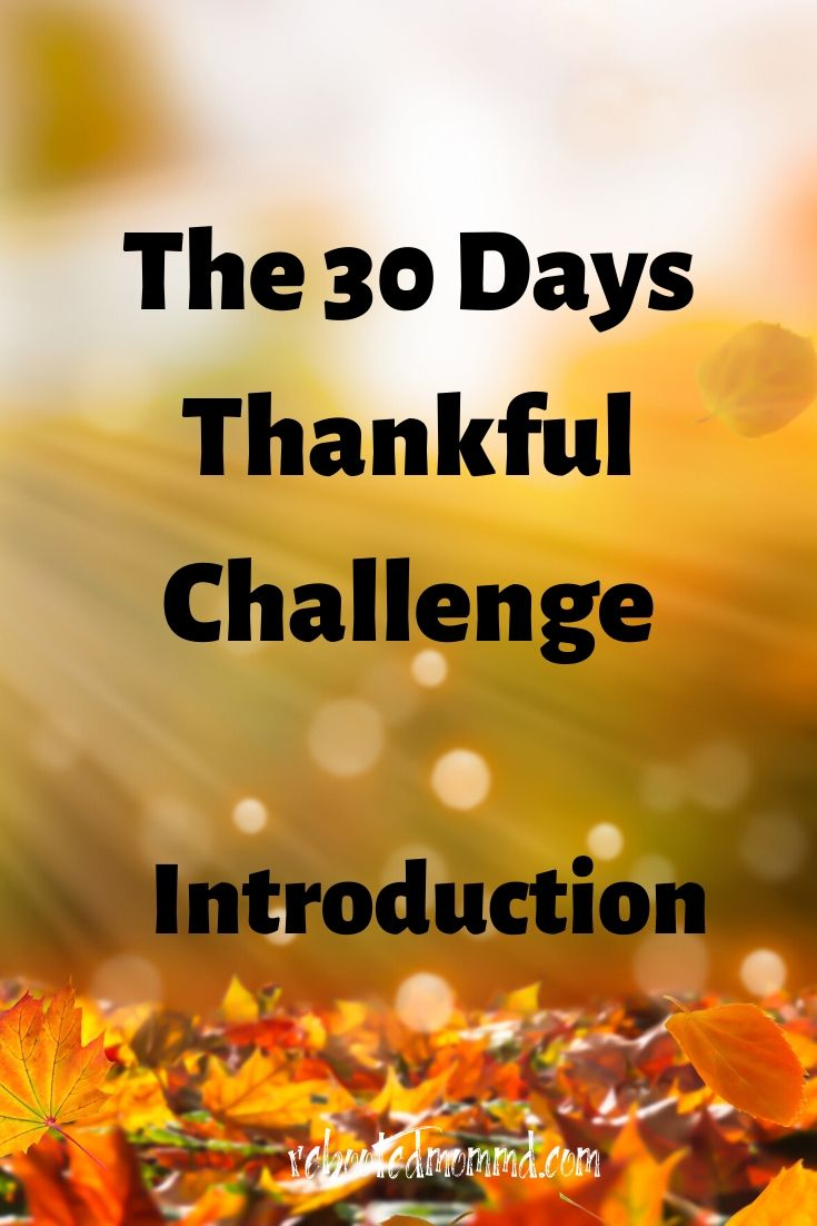 30 Thankful Days: Consideration of the Beauty of Life