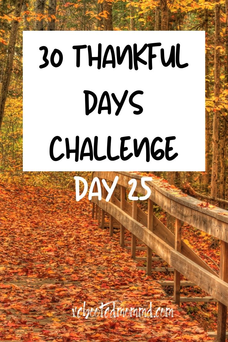 Day 25: Thankful for Life\'s Precious Gifts
