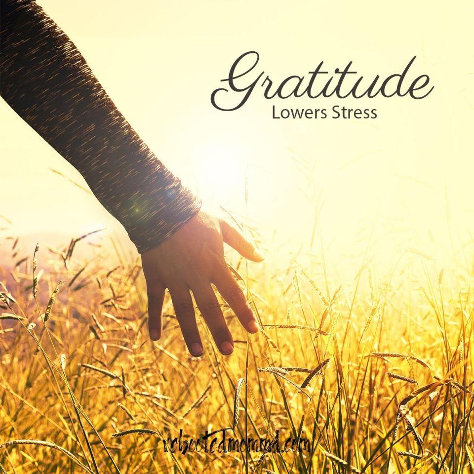gratitude stress