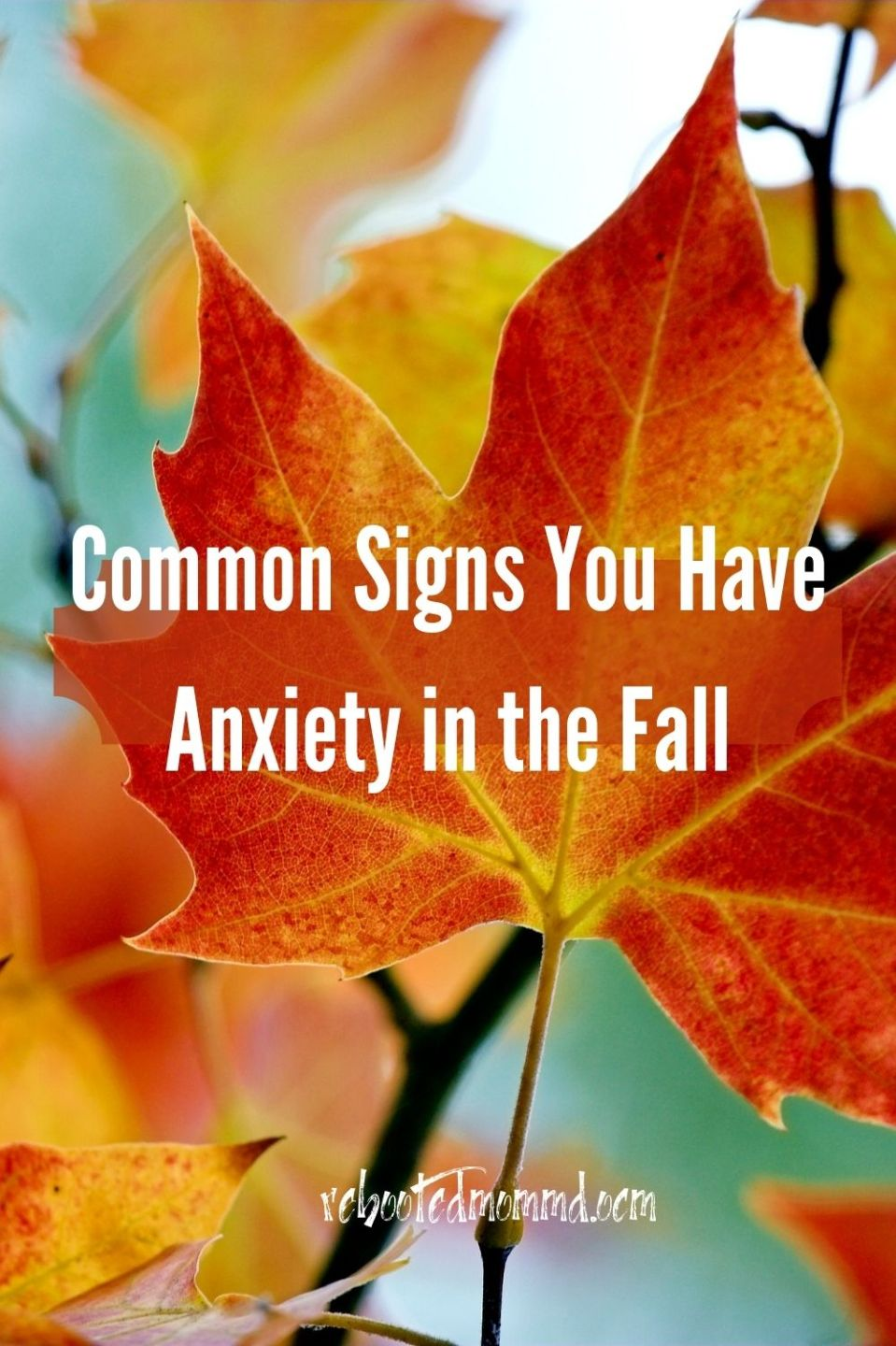 Common Signs You Have Anxiety in the Fall