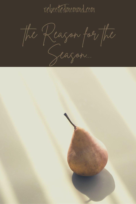 Gratitude: The Reason for the Season