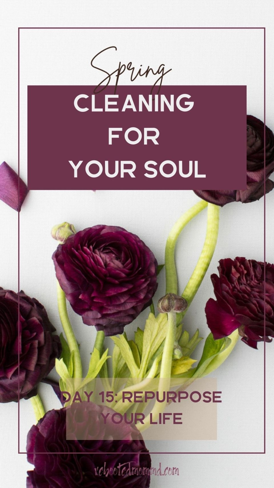 Spring Cleaning for Your Soul, Day 15: Repurpose Your Life
