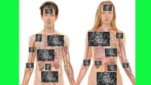 ser-humano-placas