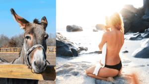 Inteligente se dá bem no sexo? E burro?