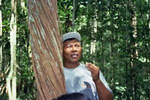 guia indígena