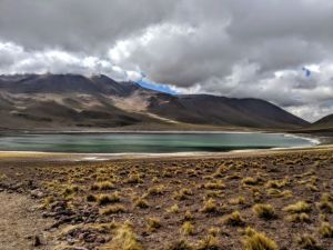 Laguna Miscanti In The Atacama Desert