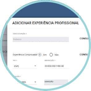experiencia_profissional