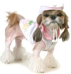 dog-fashion-2.jpg