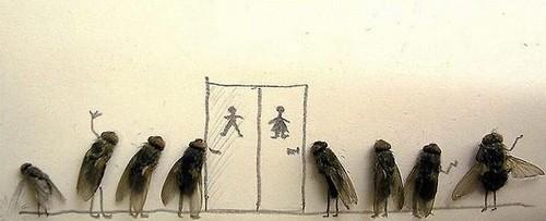 arte-moscas