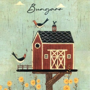 Bungaro - Appartenenza