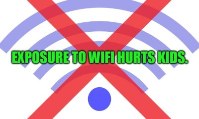 Environmental Attorney, Author, Activist Robert F. Kennedy Jr. Wants Federal Warnings about WiFi Radiation Exposure Especially in re Kids