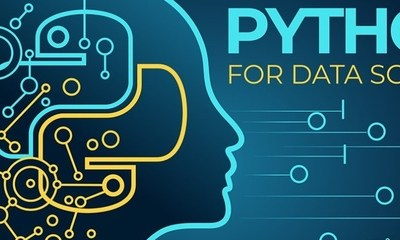 top six Python packages for data science professionals
