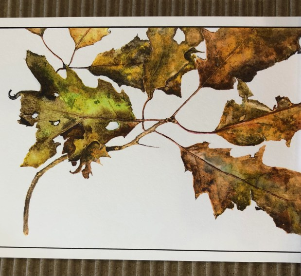 1635251576 681 Cherish autumn by bringing the outdoors in for your arrangements