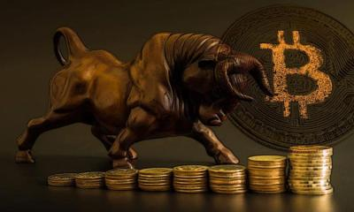Picture of a bronze bull standing on stacked coins with a bitcoin next to it