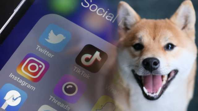 Shiba Inu (SHIB) Still Trending on Social Media But Prices Faces Consolidation