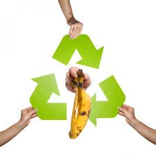 Ahorra con el reciclaje de tu comida