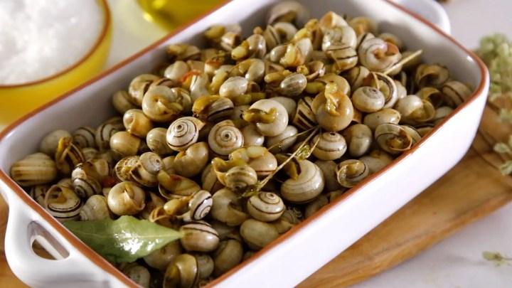 caracoles al estilo de Portugal - Como cocinar caracoles al estilo de Portugal