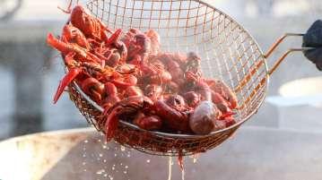 Cangrejos de río con salsa de tomate