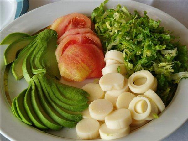 Propiedades nutricionales del Palmito en una dieta vegetariana… (1/2)