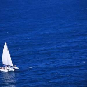 7fb770f34c796f7501d3cf0f0dc39075 - ▷ Cruzando la bahía 📖