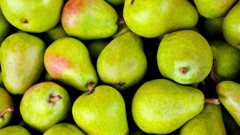 fruit legume poire