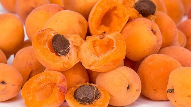 fruits legumes saison abricot