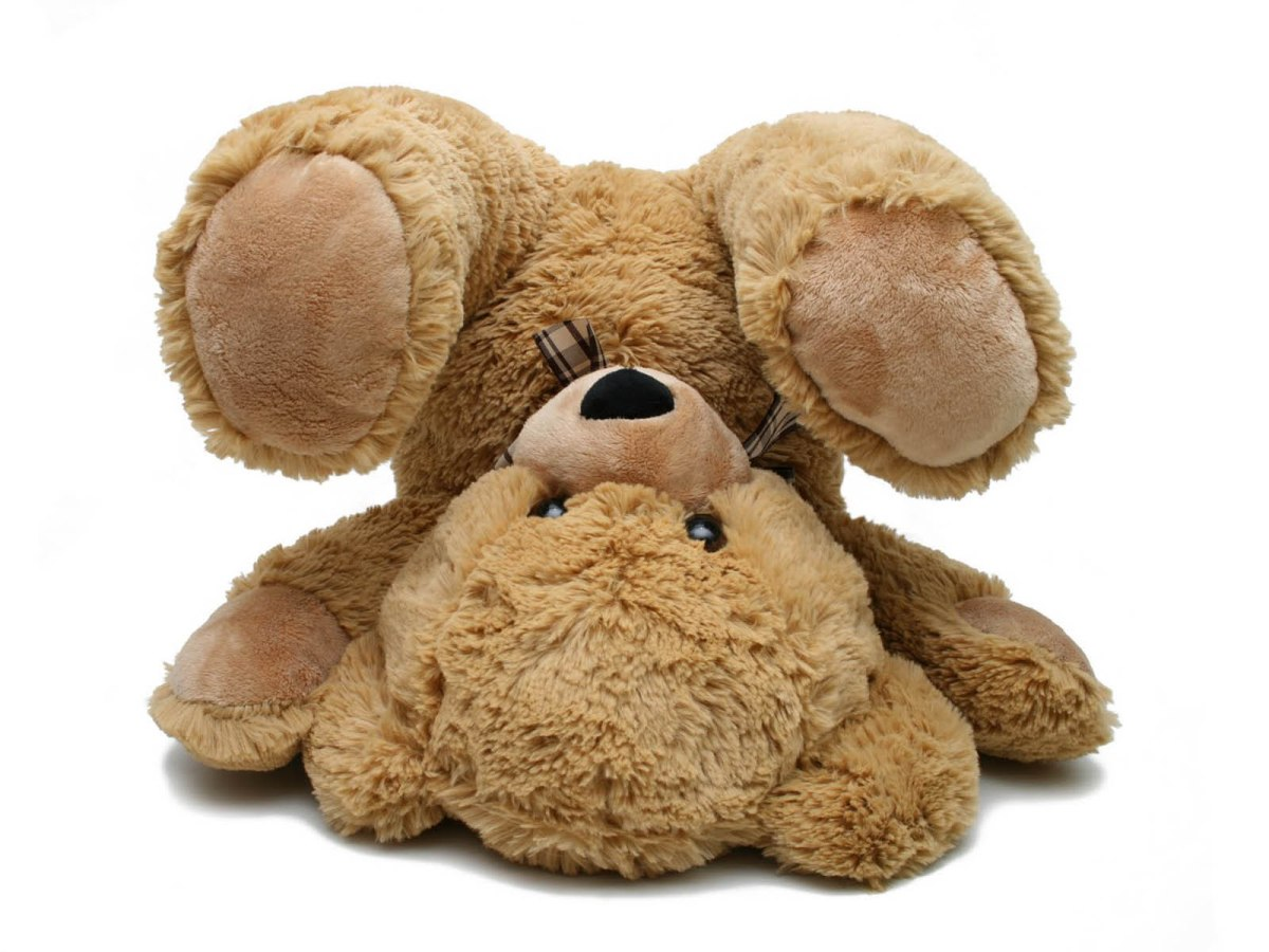 Theme: Teddy Bear Week!