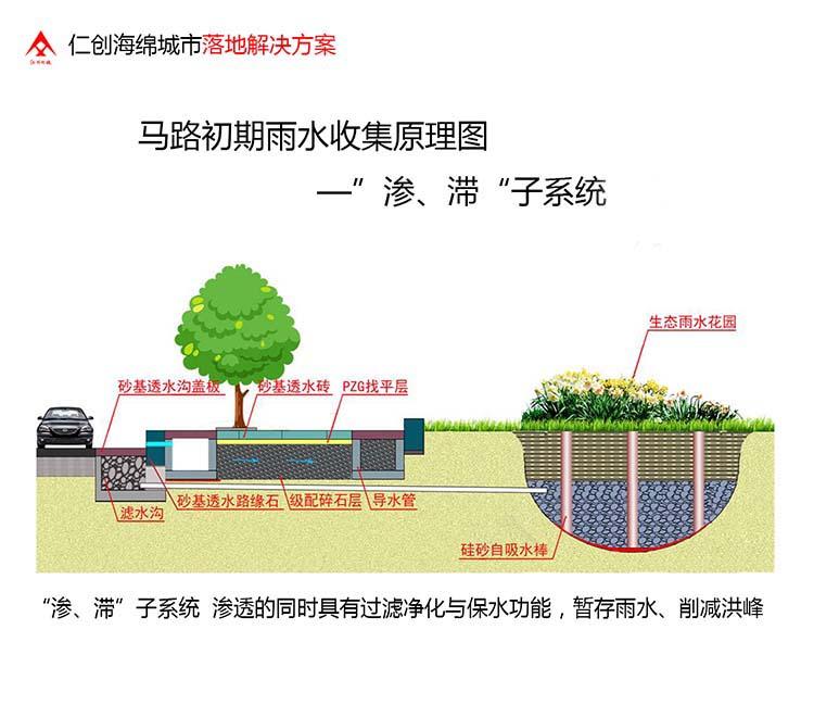 Planting Trees in the Desert, Green Desert Plants
