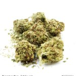 Drogenverstöße