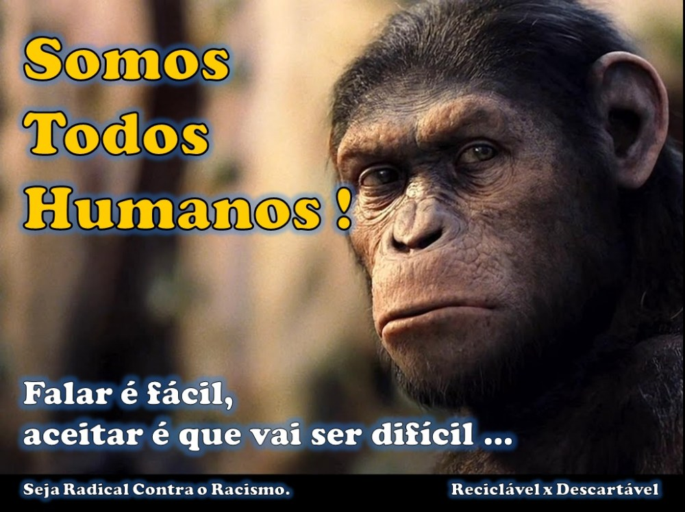 Sobre macacos, bananas e racismo. (1/6)