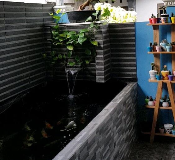 above ground koi pond 1