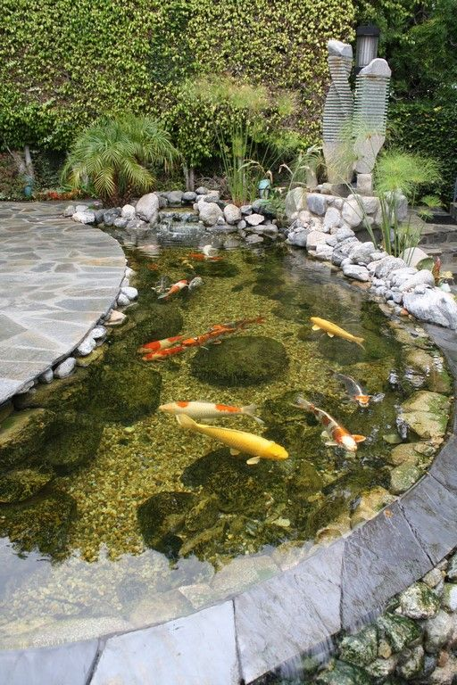 koi pond landscaping 14
