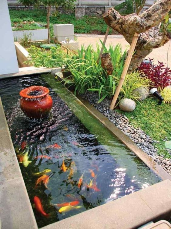 koi pond landscaping 7