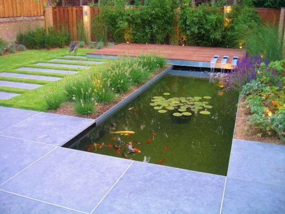 minimalist pond 14