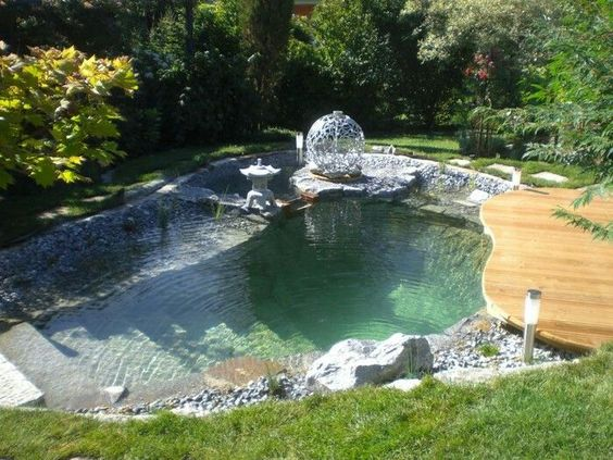 natural swimming pool 12