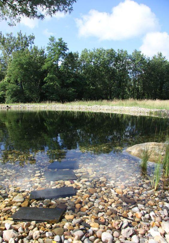 natural swimming pool 5